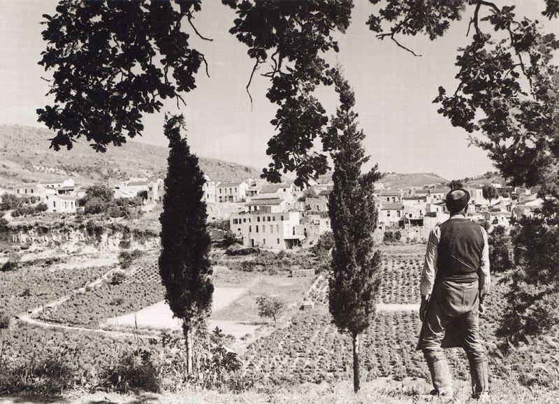 Αυγενική 1939