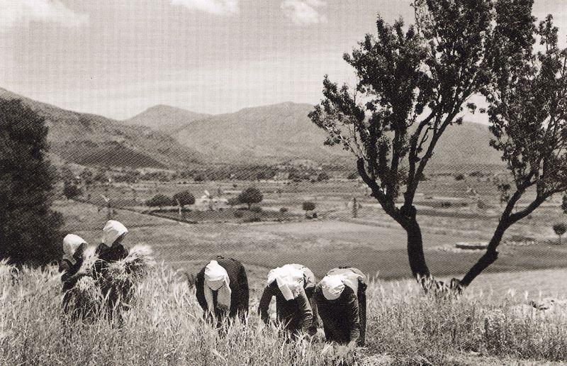Μεσαρά 1939