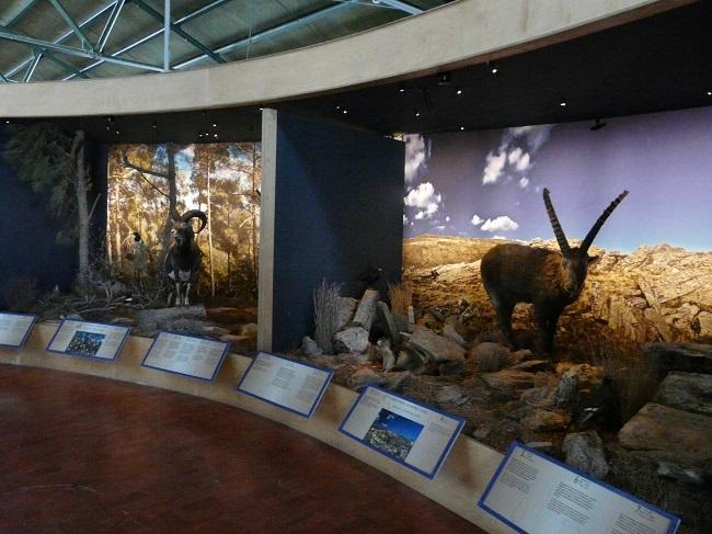 Άποψη από το Μεγαδιόραμα στο Μουσείο Φυσικής Κρήτης