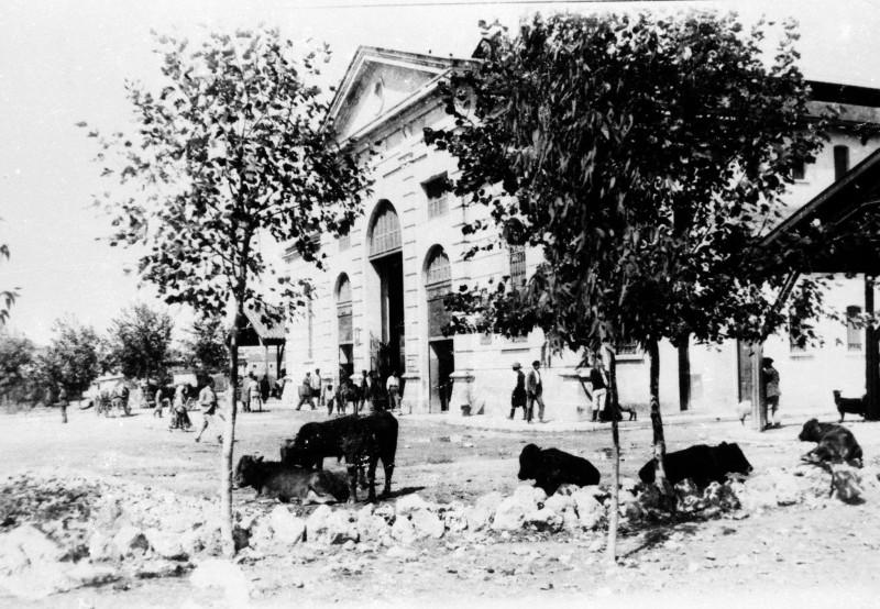 1915, δημοτική αγορά Χανίων. Είναι κοντά στα 2 χρόνια λειτουργίας της
