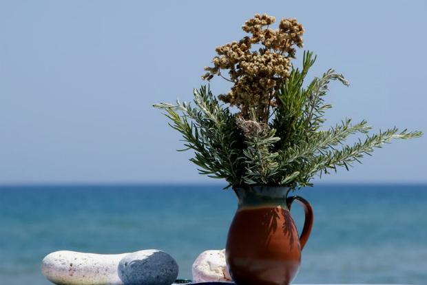 Βότανα Κρήτης