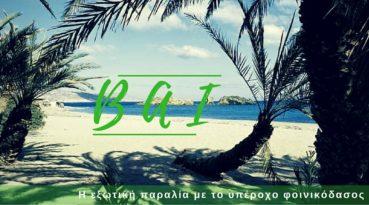 Βάι: Η εξωτική παραλία με το υπέροχο φοινικόδασος που έγινε γνωστή από μια διαφήμιση σοκολάτας