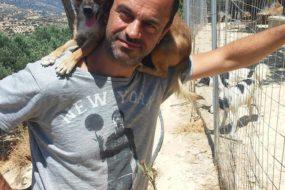 Ο άντρας που ζει στην Κρήτη συντροφιά με 250 σκυλιά