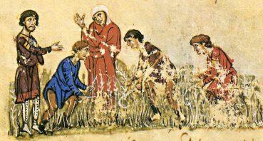 Η γη και οι αγρότες στη μεσαιωνική Κρήτη