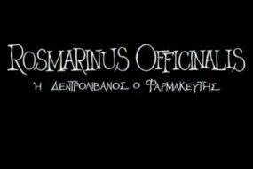 Rosmarinus Officinalis ή Δενδρολίβανος ο Φαρμακευτής – ταινία μικρού μήκους που γυρίστηκε στην Κρήτη